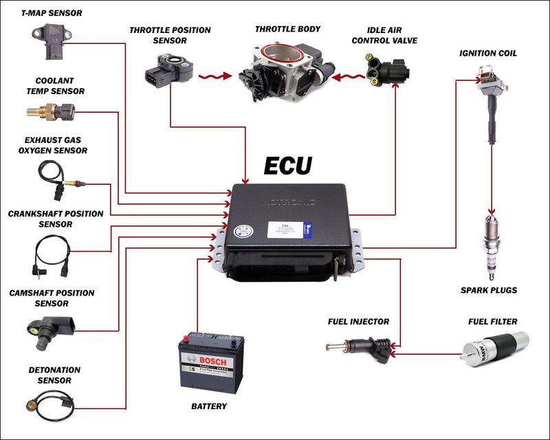 Bộ điều khiển – Electronic control Unit