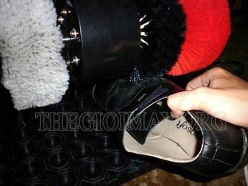 máy đánh giày apus