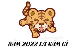nam-2022-la-nam-con-gi