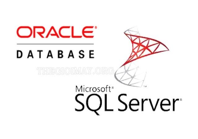 so-sanh-oracle-database-va-microsoft-sql-server